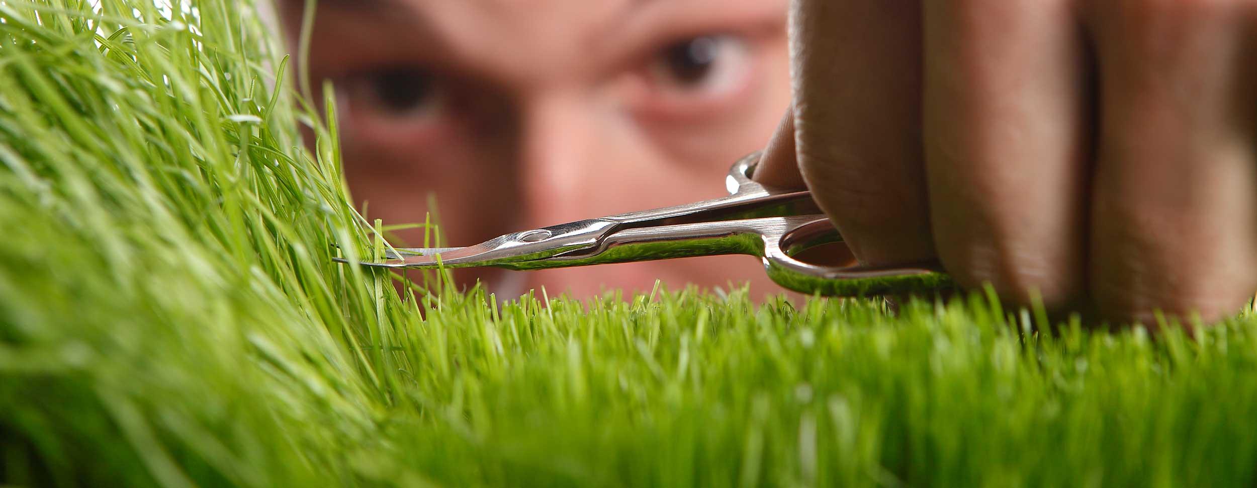 Mann-schneidet-Gras-mit-Schere-genau-Rutnig-Seppi-Rasenservice